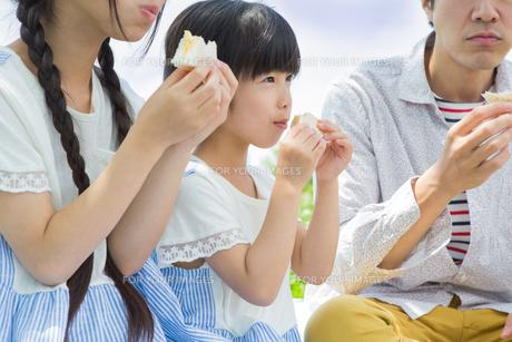 ピクニックをする家族の写真素材 [FYI00922681]