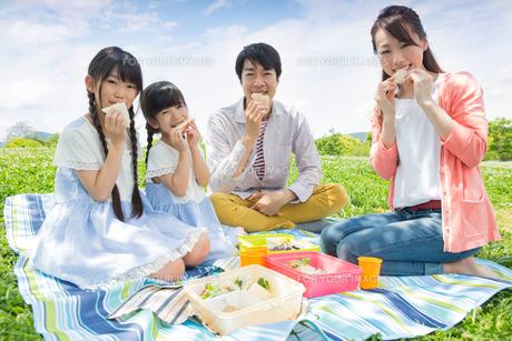 ピクニックをする家族の素材 [FYI00922683]