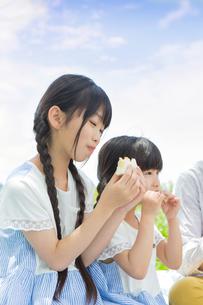 ピクニックをする家族の写真素材 [FYI00922687]