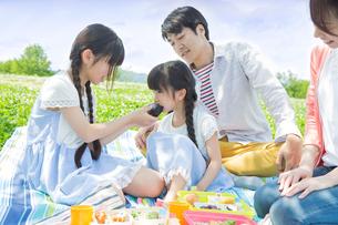 ピクニックをする家族の写真素材 [FYI00922691]