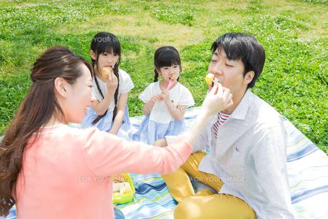 ピクニックをする家族の写真素材 [FYI00922693]