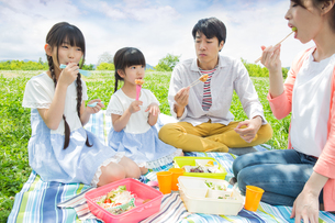 ピクニックをする家族の写真素材 [FYI00922694]