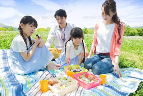 ピクニックをする家族の写真素材 [FYI00922698]