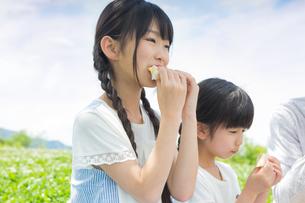 ピクニックをする家族の写真素材 [FYI00922702]