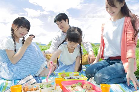 ピクニックをする家族の写真素材 [FYI00922707]