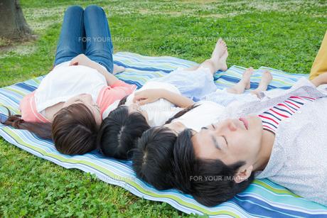 ピクニックをする家族の写真素材 [FYI00922714]