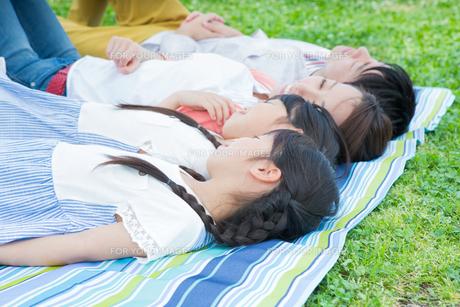 ピクニックをする家族の写真素材 [FYI00922733]
