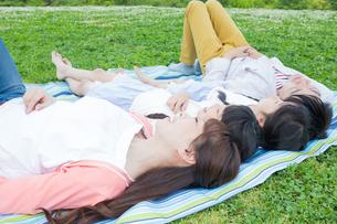 ピクニックをする家族の写真素材 [FYI00922769]