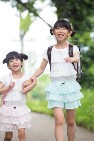 一緒に歩く姉妹の写真素材 [FYI00922779]