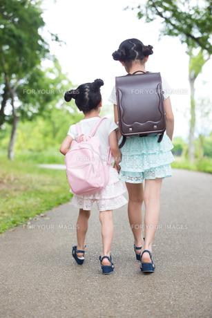 一緒に歩く姉妹の写真素材 [FYI00922787]