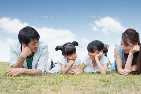 芝生で寝転がる家族の写真素材 [FYI00922810]