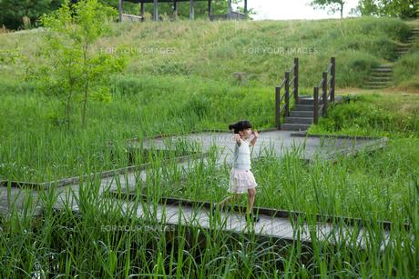 木の道を歩く少女の写真素材 [FYI00922881]