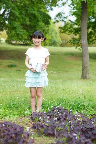 植物に水をやる小学生の写真素材 [FYI00922884]