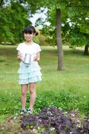 植物に水をやる小学生の素材 [FYI00922899]