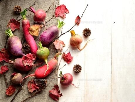ニット生地の上の冬のカラフルな根菜と枯葉 白木材背景 の写真素材 [FYI00922969]