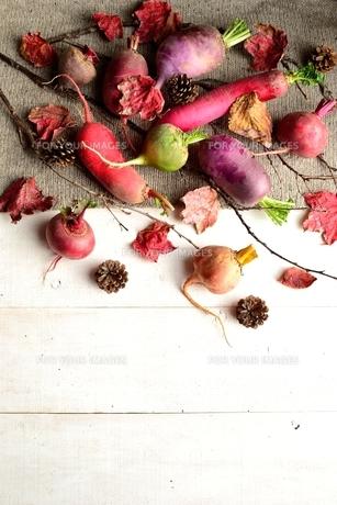 ニット生地の上の冬のカラフルな根菜と枯葉 白木材背景 の写真素材 [FYI00922971]