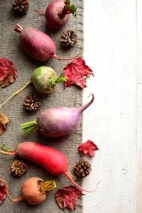 ニット生地の上に並べたカラフルな根菜と落葉の写真素材 [FYI00922973]