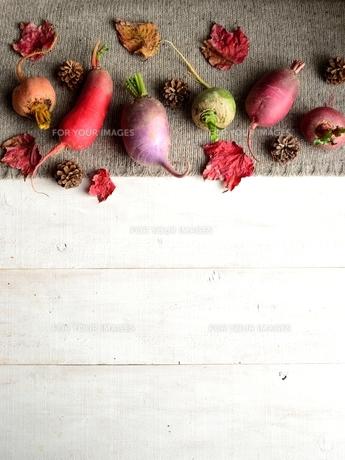 ニット生地の上の冬のカラフルな根菜と枯葉 白木材背景 の写真素材 [FYI00922974]