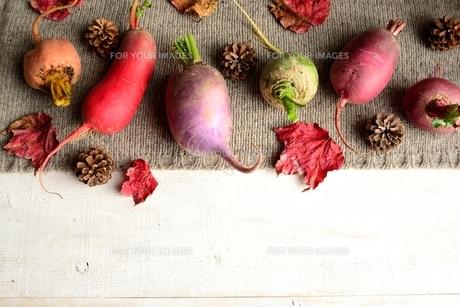 ニット生地の上の冬のカラフルな根菜と枯葉 白木材背景 の写真素材 [FYI00922975]
