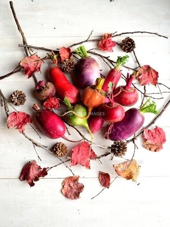冬のカラフルな根菜と枯葉 白木材背景 の写真素材 [FYI00922979]