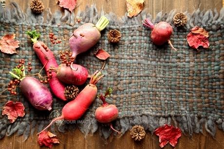 ウール生地の上の冬のカラフルな根菜 の写真素材 [FYI00922982]