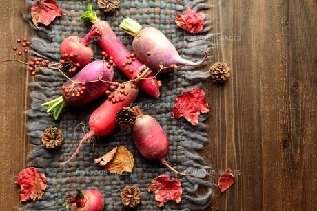 ウール生地の上の冬のカラフルな根菜 の写真素材 [FYI00922983]
