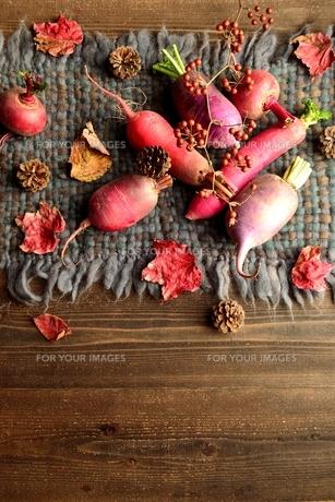 ウール生地の上の冬のカラフルな根菜 の写真素材 [FYI00922984]