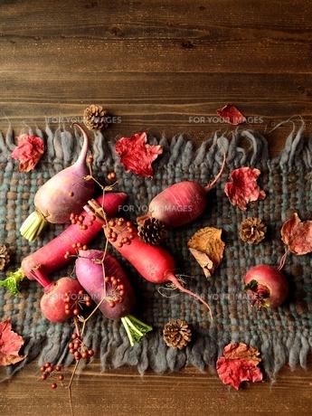 ウール生地の上の冬のカラフルな根菜 の写真素材 [FYI00922985]