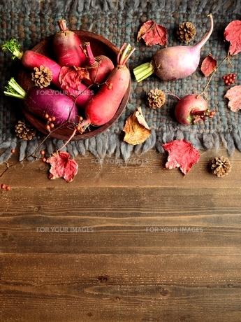ウール生地の上の冬のカラフルな根菜 の写真素材 [FYI00922986]