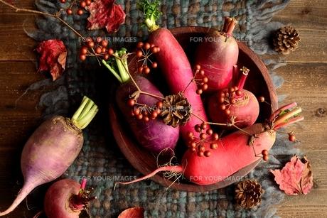 ウール生地の上の冬のカラフルな根菜 の写真素材 [FYI00922987]