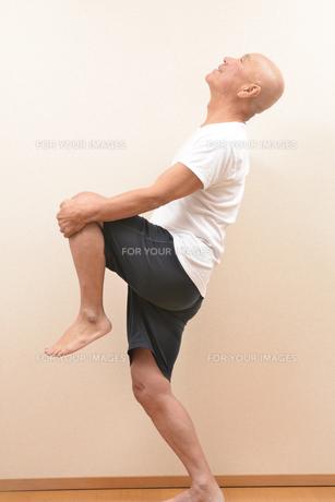 シニアの体操の写真素材 [FYI00923038]