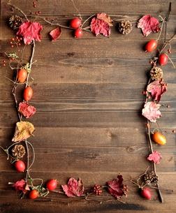 赤い落ち葉とからすうりとまつぼっくり フレーム 黒木材背景の写真素材 [FYI00923113]