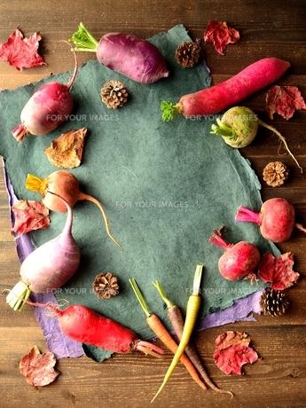 カラフルな根菜と落葉とブルーグレーの紙の写真素材 [FYI00923122]