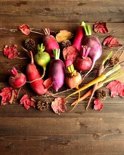 カラフルな根菜と落葉 黒木材背景の写真素材 [FYI00923168]