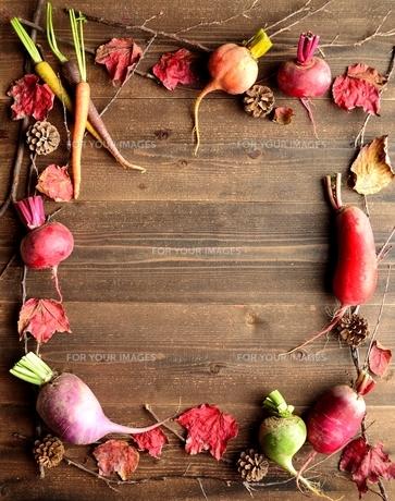 カラフルな根菜と落葉 黒木材背景の写真素材 [FYI00923189]