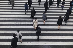 横断歩道をわたるサラリーマンの写真素材 [FYI00923278]