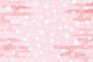 桜のイラスト素材 [FYI00923636]