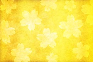 桜のイラスト素材 [FYI00923770]