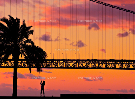 夕景の明石海峡大橋の写真素材 [FYI00923779]