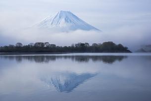 朝もやの富士山の写真素材 [FYI00923794]