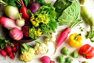 グリーン系の野菜とカラフルな根菜  白木材背景の写真素材 [FYI00923816]