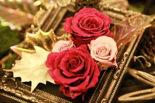額縁に飾られた薔薇の写真素材 [FYI00923898]