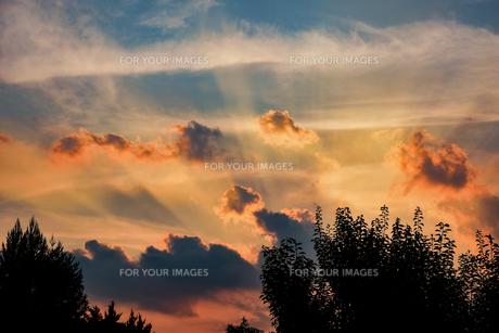 オレンジの光線の写真素材 [FYI00924037]