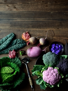 紫カリフラワーとグリーン系の野菜の写真素材 [FYI00924091]