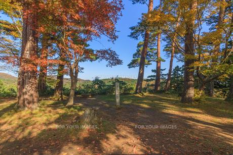 秋の春日山城跡の直江山城守宅跡の風景の写真素材 [FYI00924183]