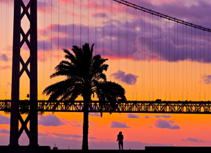 夕景の明石海峡大橋の写真素材 [FYI00924228]
