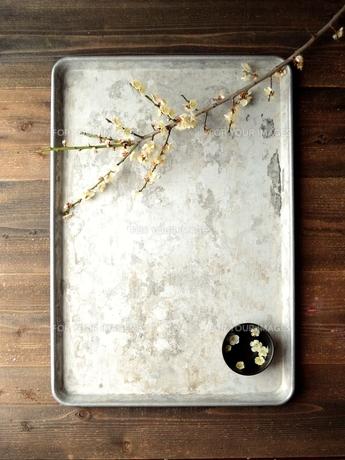 銀色のトレーにのせた白い梅の花と小鉢の写真素材 [FYI00924463]
