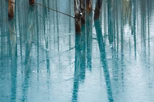 初冬の湖 美瑛町の写真素材 [FYI00924526]