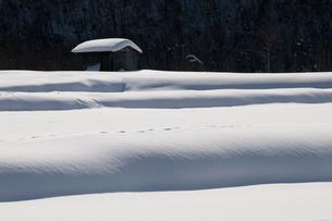 雪景色の写真素材 [FYI00924541]