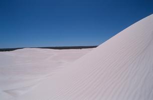 砂丘と青空の素材 [FYI00925886]
